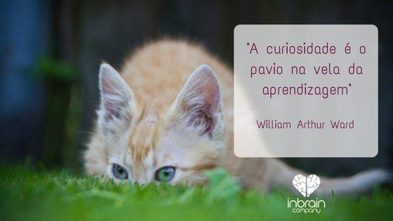 Curiosidade e aprendizagem