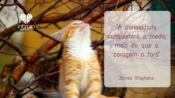 Curiosidade e coragem