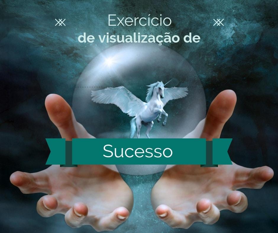 Visualizar o sucesso