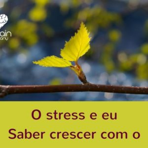 O stress e eu