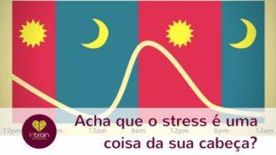 Acha que o stress é uma coisa da sua cabeça?