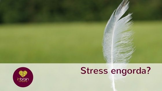Stress engorda?